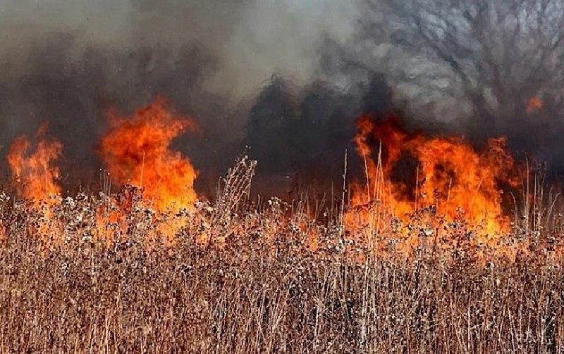 На территории Хабаровского края действует особый противопожарный режим