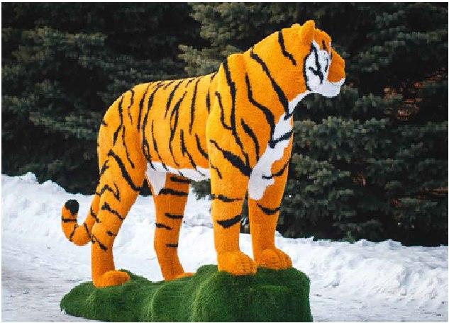 В Хабаровске поселятся необычный тигр, собака и музыкант