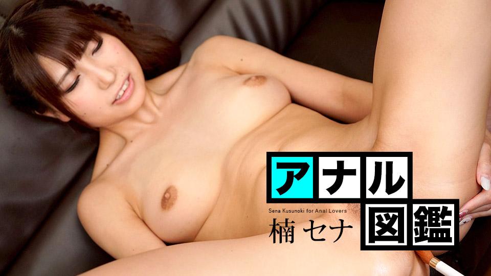 032421-001 アナル図鑑 楠セナ