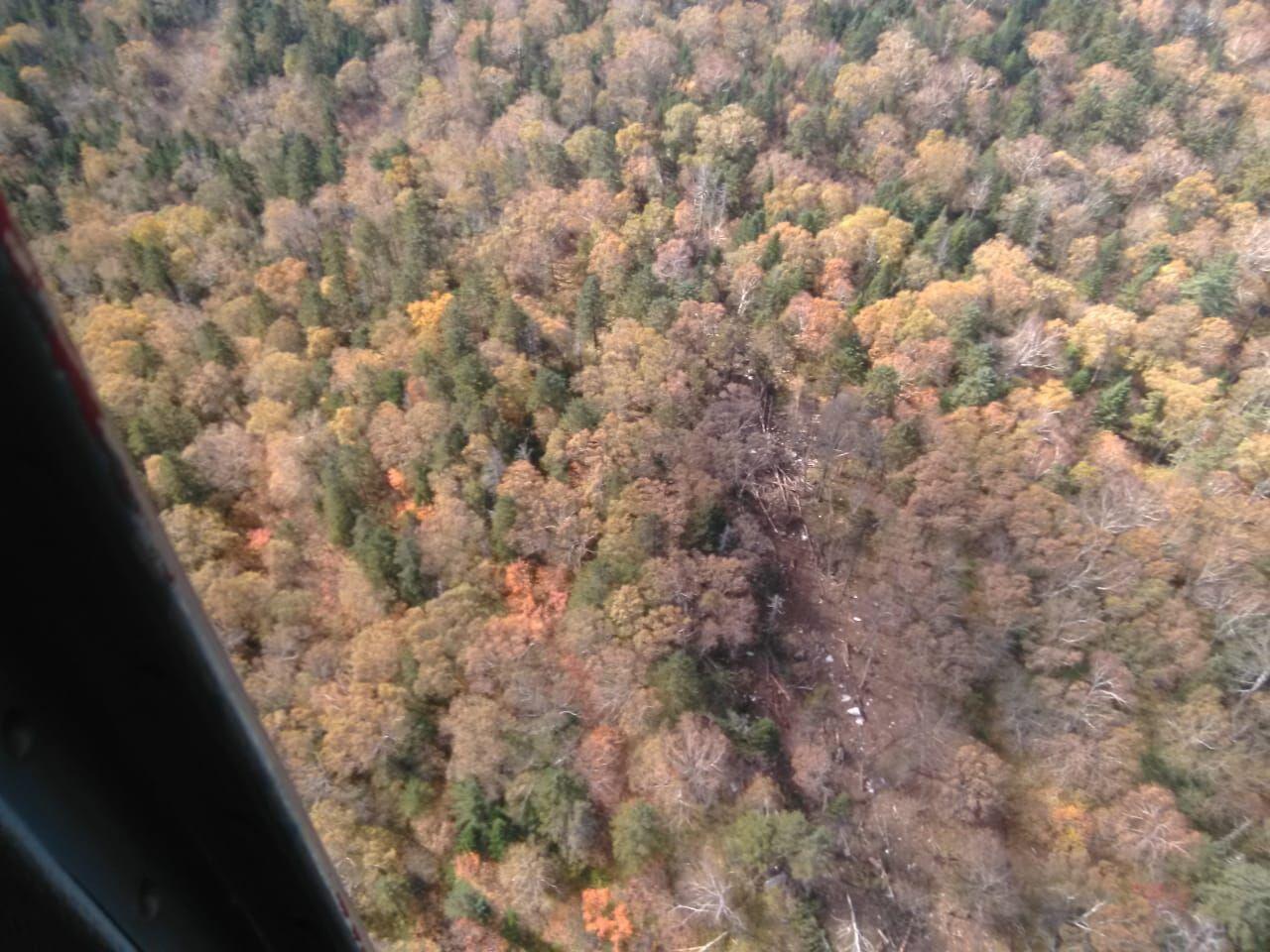 МЧС опубликовало фотографии с места крушения самолета АН-26 под Хабаровском