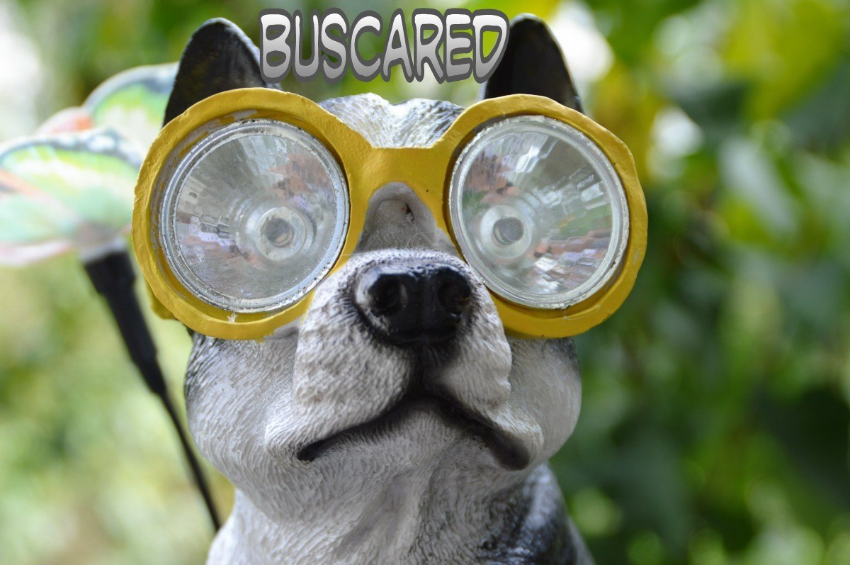 BuscaRed