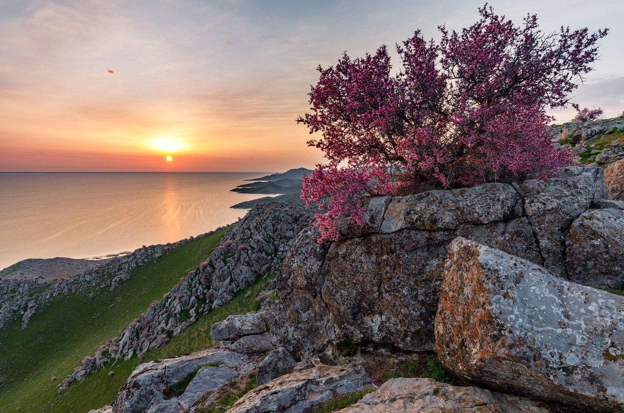 Радоновое озеро в лопухинке фото сохранить фото