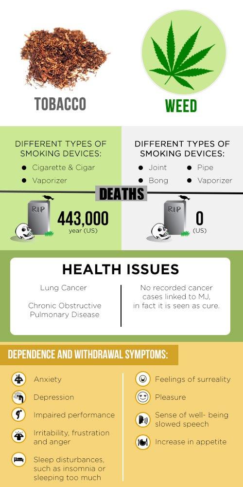 Марихуана пропорции к табаку уничтожение конопли владимирская область