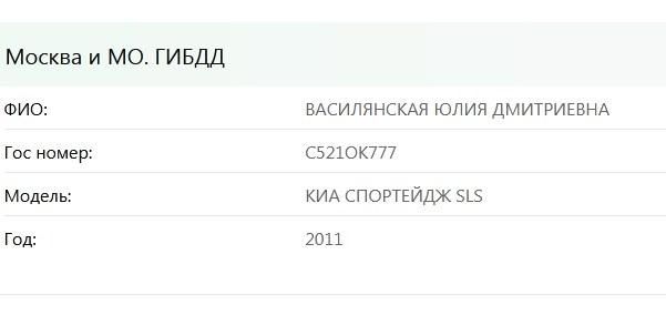 Юлия Василянская - от эскортницы до сутенерши путь в пять лет 41