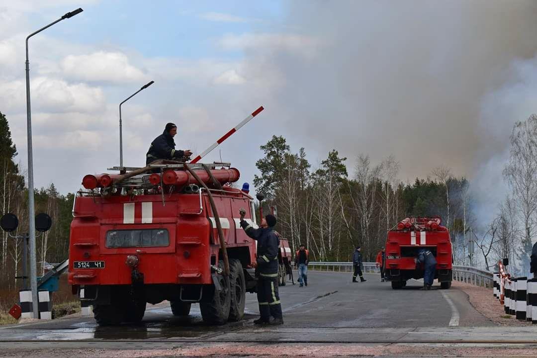 Пожежі на Житомирщині