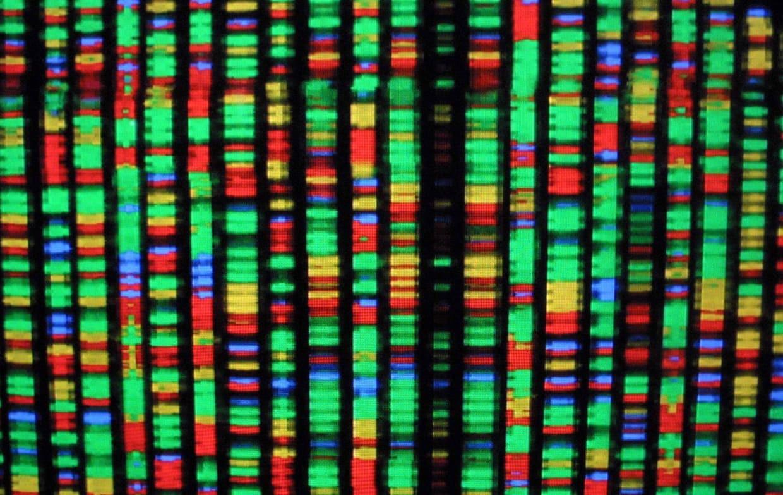 http://telegra.ph/V-chem-smysl-geneticheskih-issledovanij-seksualnoj-orientacii-06-29