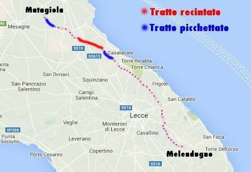 Mappa Xylella Puglia.Xylella In Puglia La Verita Dietro Al Taglio Degli Ulivi Speciale Tgtalk Byoblu La Tv Dei Cittadini