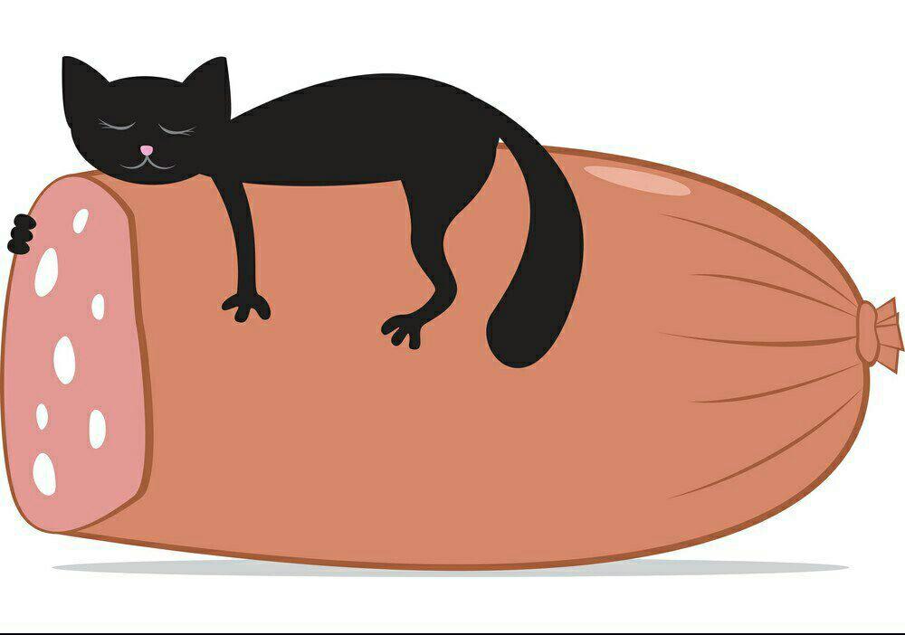 любимый, кот с куском колбасы гифка дальше роль играли