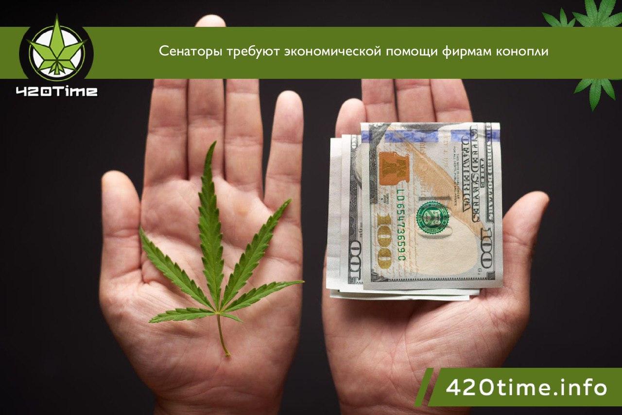 Табачить марихуану с та что делает с человеком марихуана