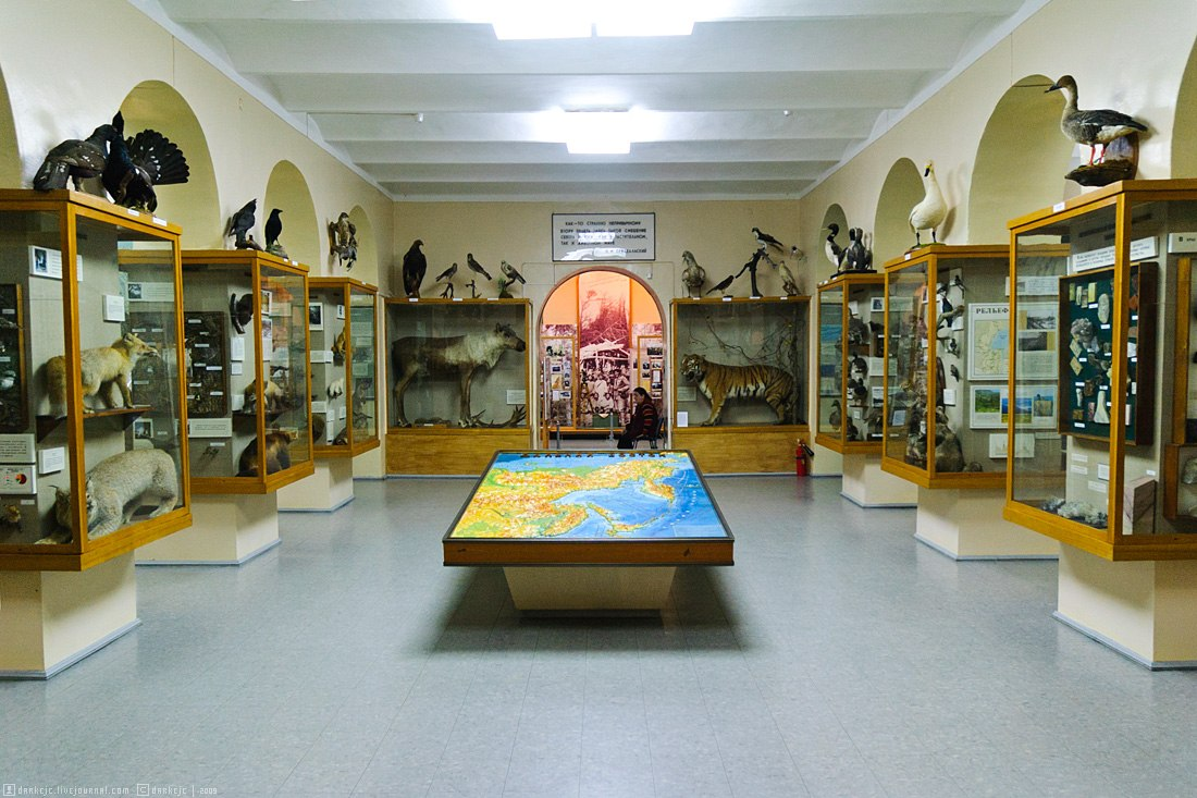 Музеи в Хабаровском крае вернутся к обычному режиму работы