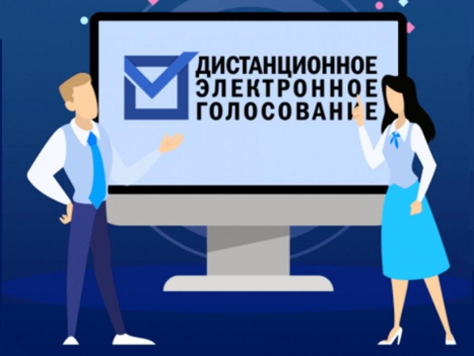 Центризбирком РФ протестирует систему дистанционного электронного голосования