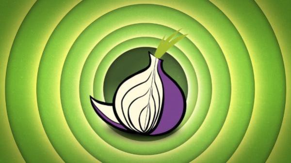 Ip адреса для tor browser gydra тор браузер скачать с торрента бесплатно на русском языке hyrda