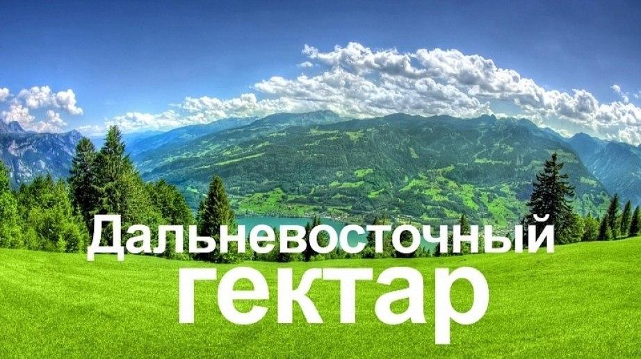 Гектар в 10 км от Хабаровска