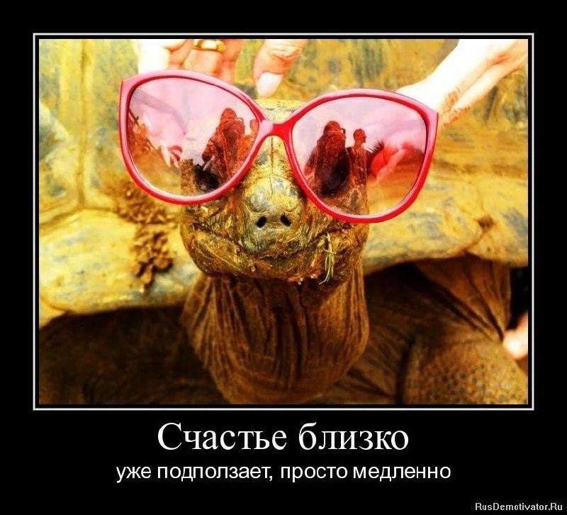 Счастье в картинках смешные