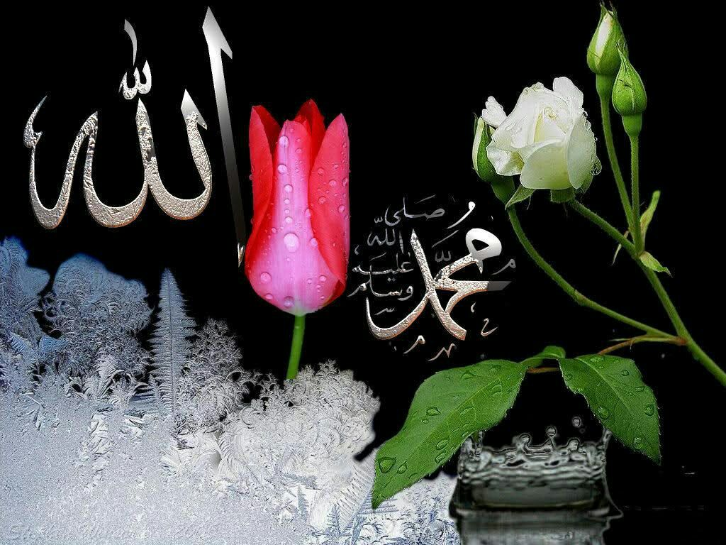 Видеть, мусульманские картинки цветы с надписями