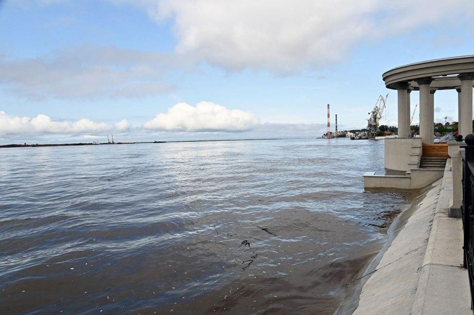 Амурский паводок подойдет к Хабаровску 19 августа