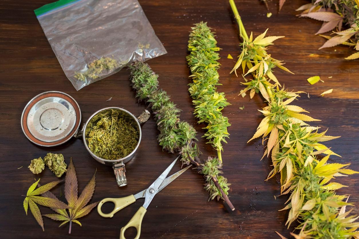 Как сделать марихуану 1 грамм конопли это сколько