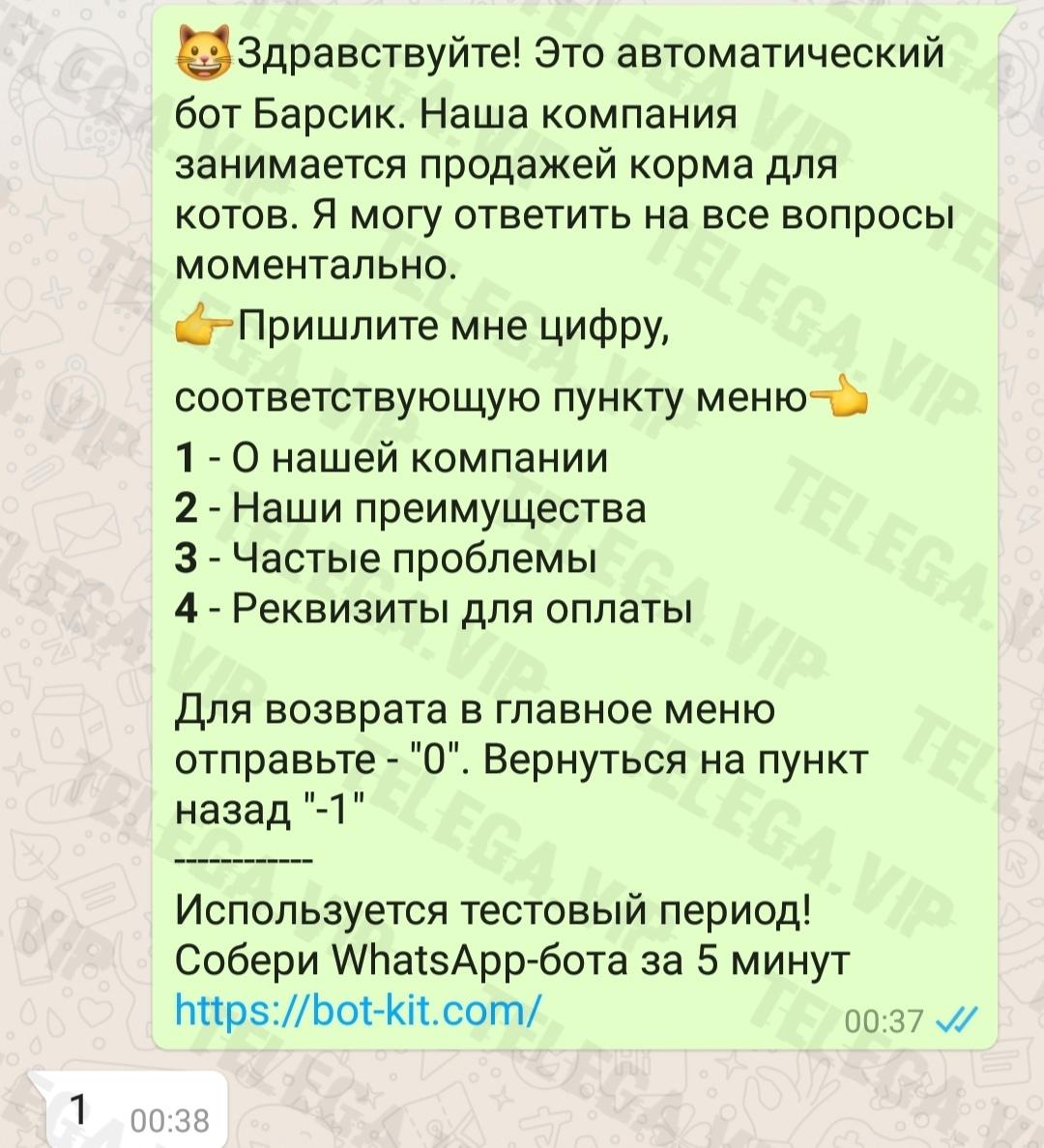 Заработок на создании чат-ботов для WhatsApp 43