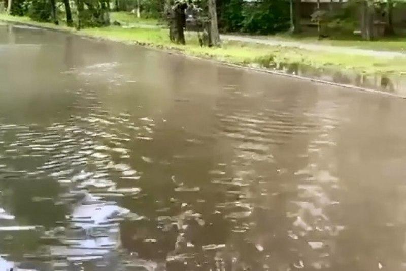 Улица ушла под воду в Хабаровске