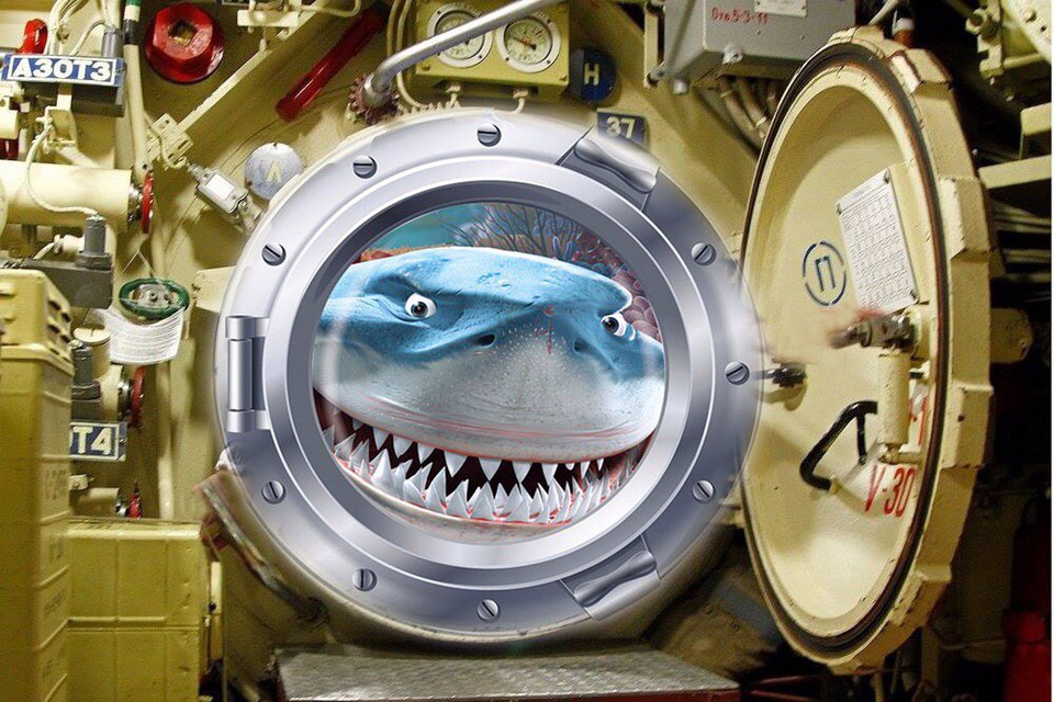 Подводная лодка курск фото после поднятия страна знает