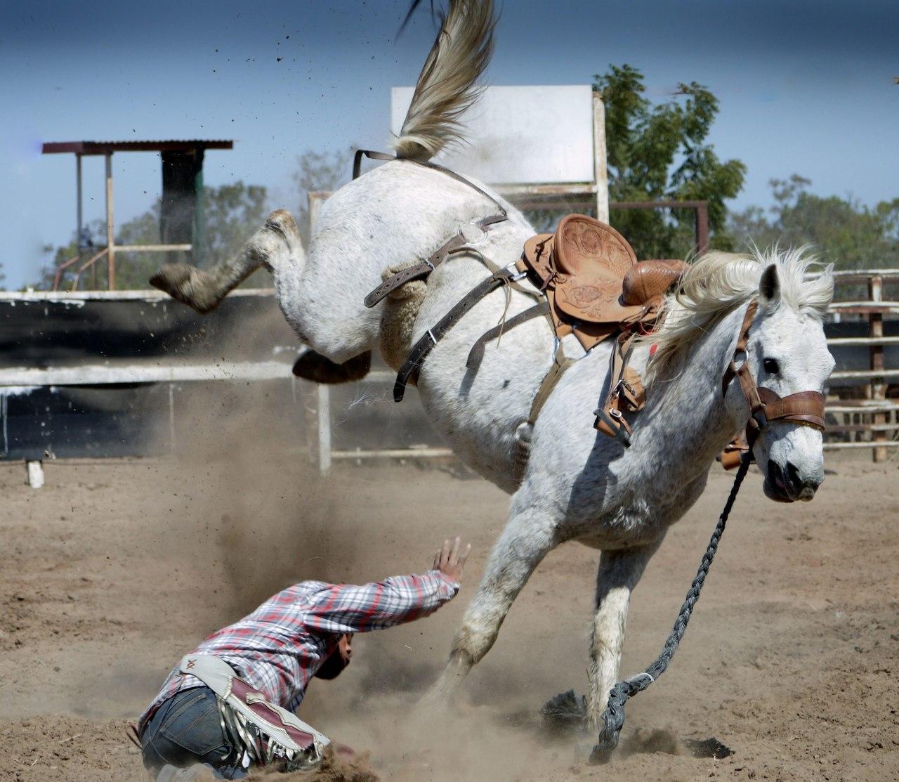 Мужчина получил травмы упав с лошади под Хабаровском