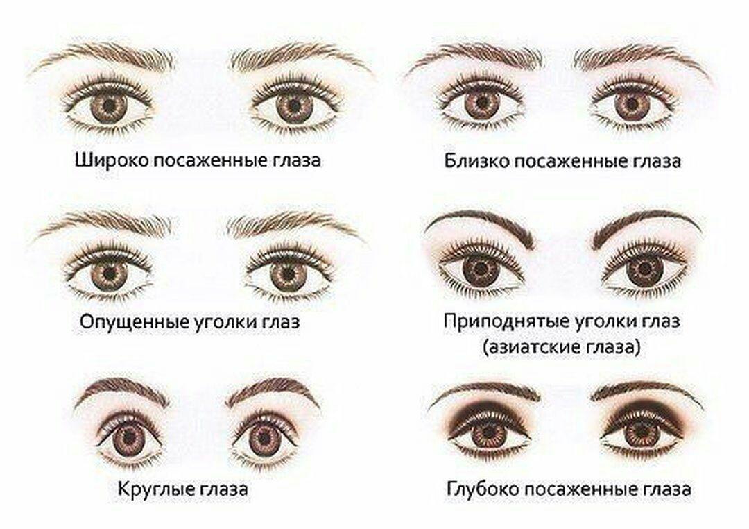 формы глаз фото и названия пить