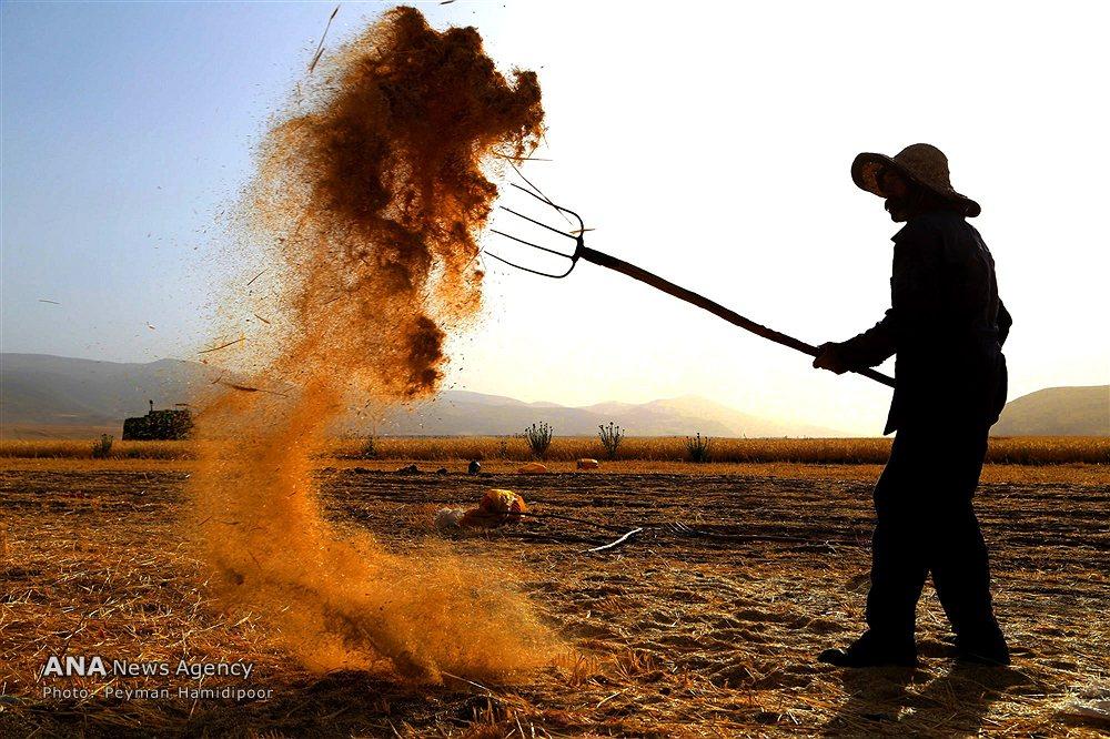 navajo agricultural products industry napi farmington nm - 1000×666