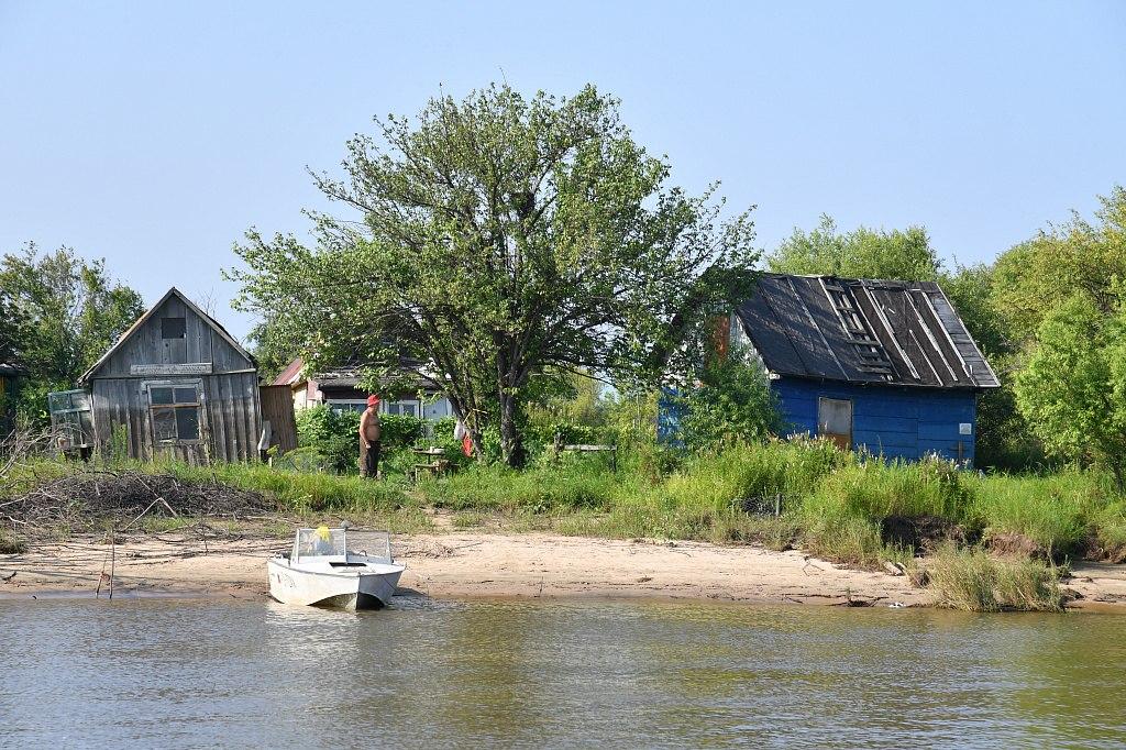 Дачников просят вывезти урожай с участков на левом берегу Амура