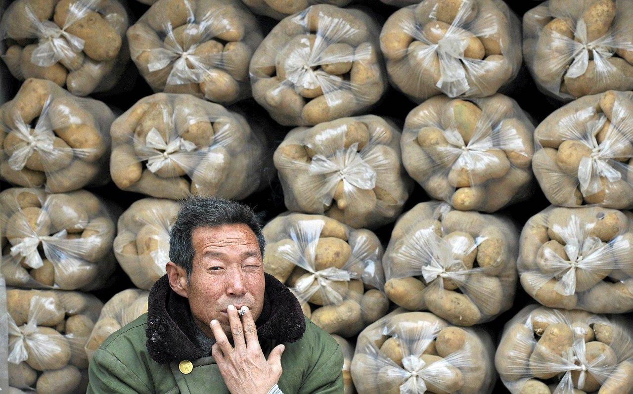 В Хабаровск прекращены поставки китайских овощей и фруктов