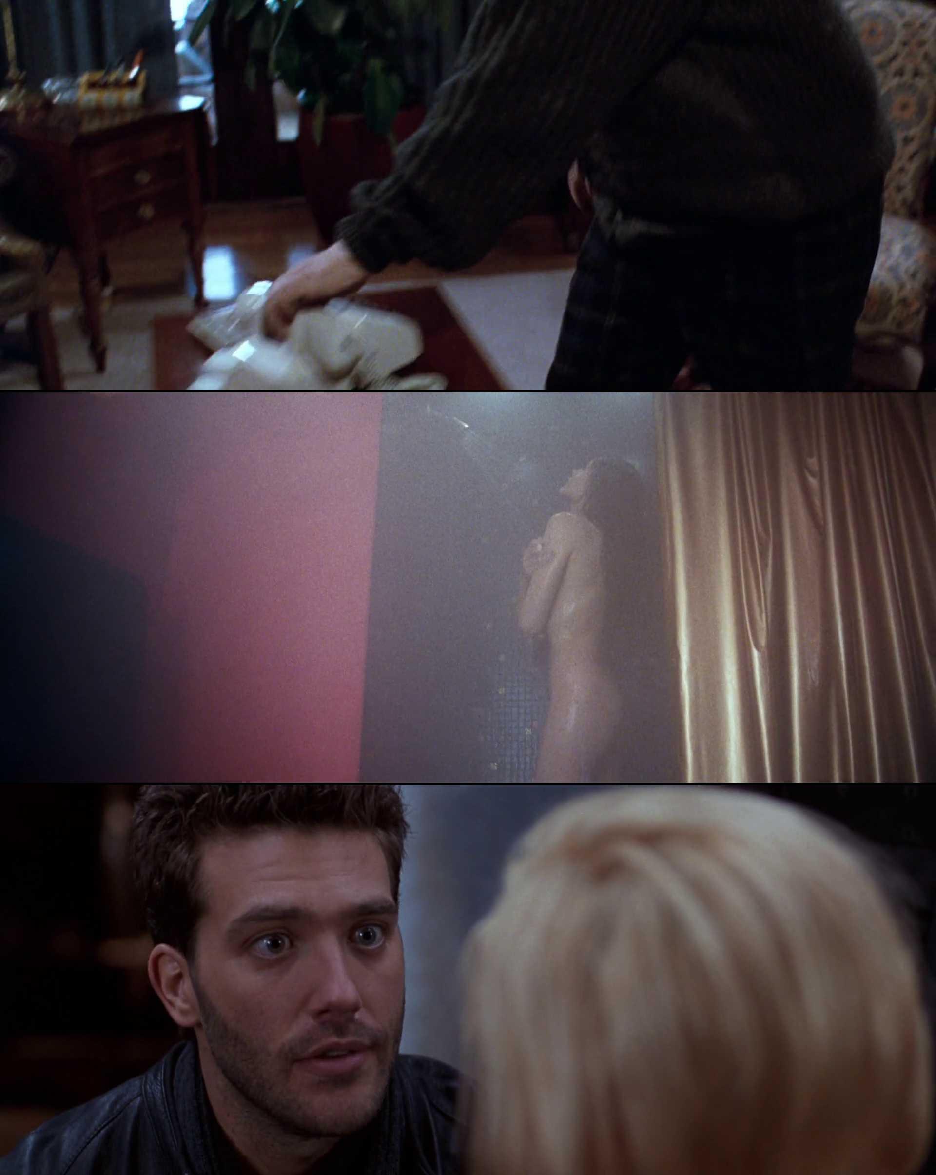Screenshot of The Long Kiss Goodnight Movie