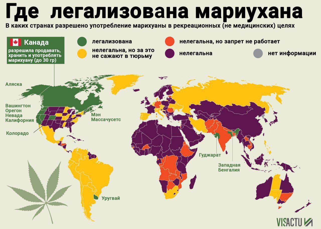 Страна где легализована марихуана какой сорт марихуаны самый лучший