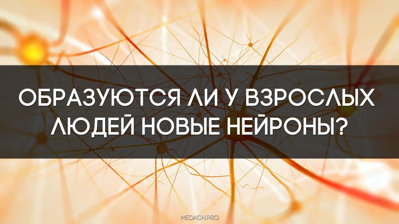 http://telegra.ph/Neodnoznachnoe-issledovanie-brosaet-vyzov-obshcheprinyatomu-faktu-sposoben-li-mozg-vzroslogo-obrazovyvat-novye-nejrony-03-14