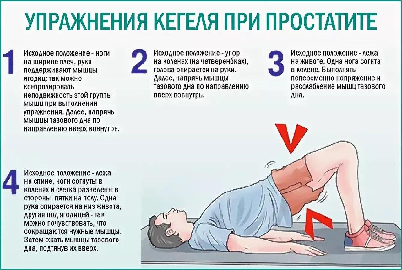 Простатит мышцы тазового дна простатит может влиять на беременность