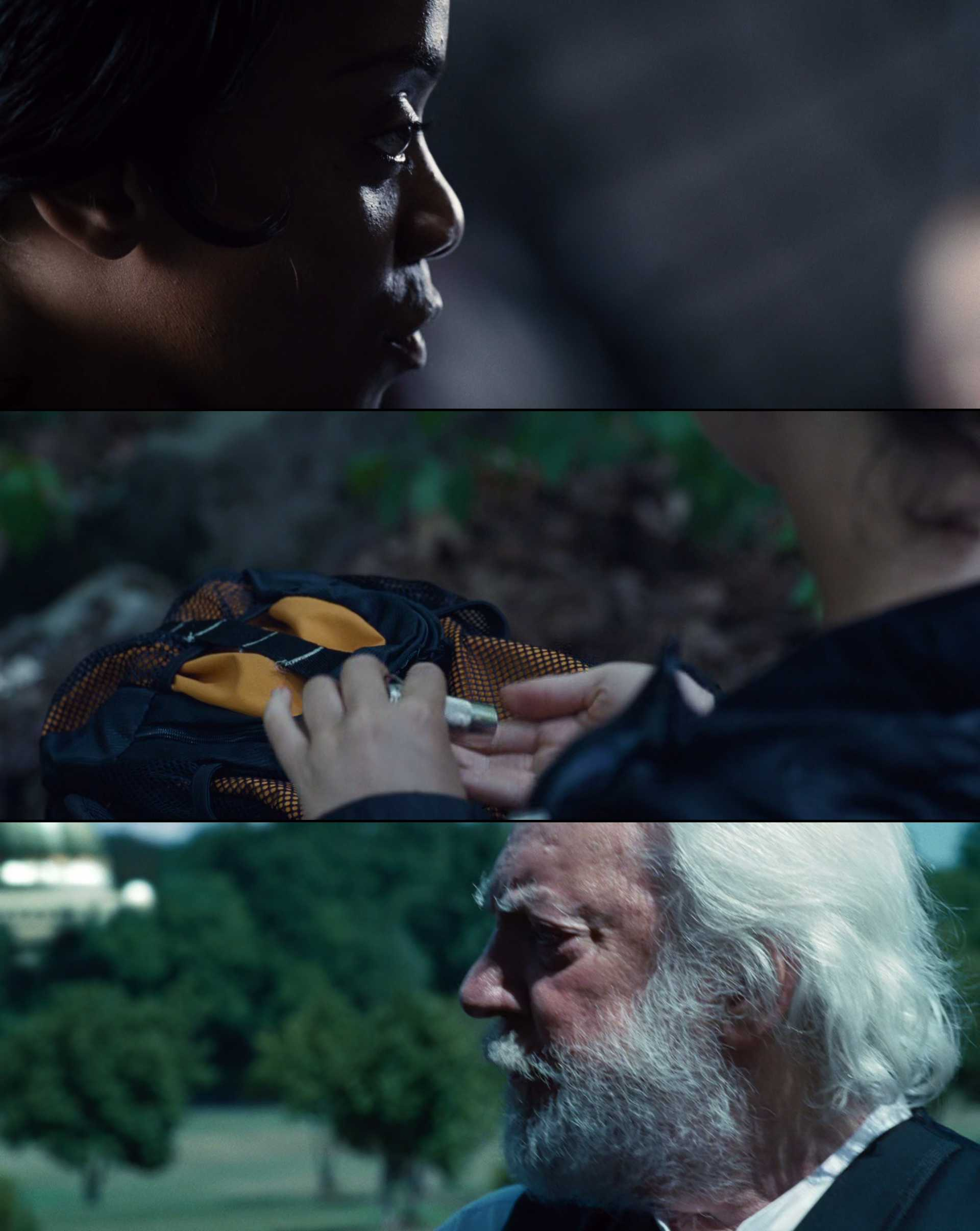 Screenshot of The Hunger Games Movie