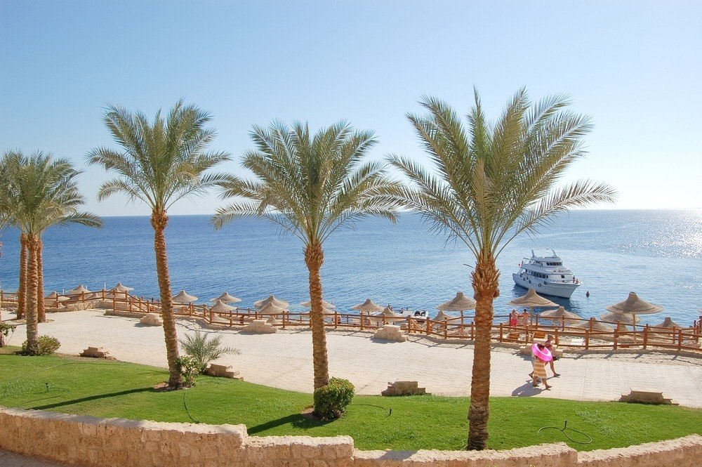 Россия возобновила регулярные рейсы на курорты Египта, в Доминикану, Молдавию и Бахрейн
