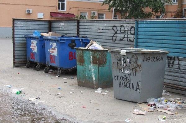 Новые тарифы на вывоз мусора разрабатывают в Хабаровском крае