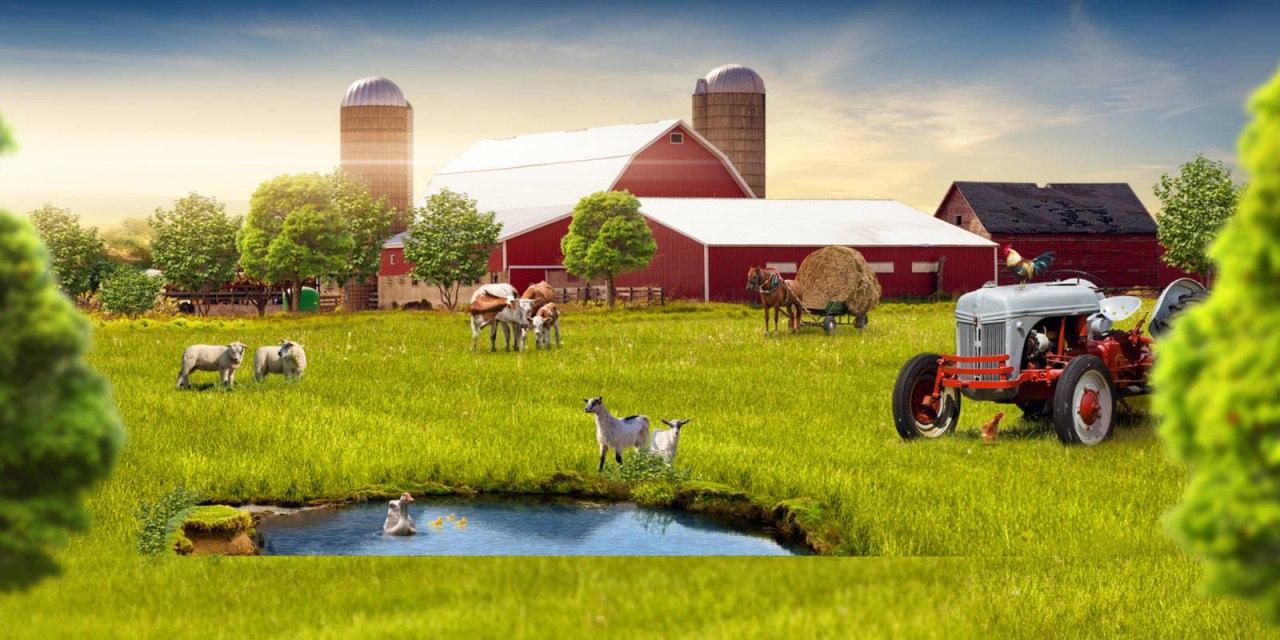 Инвестирую фермерское хозяйство получить кредит только по паспорту онлайн на