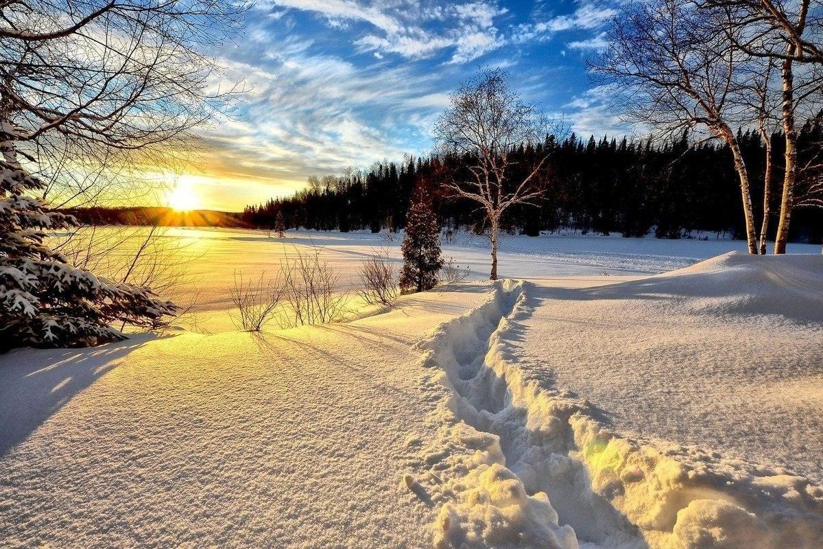 В Хабаровске лыжные базы готовятся к зимнему сезону