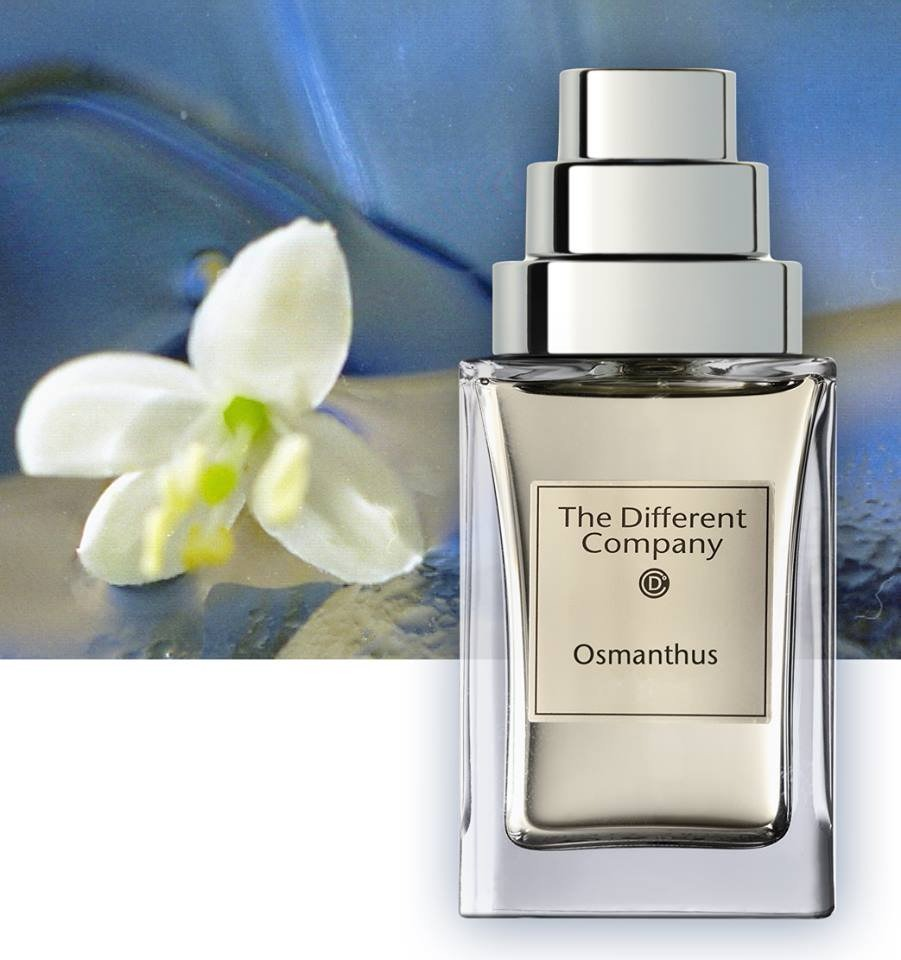 «Osmanthus»-The-Different-Company