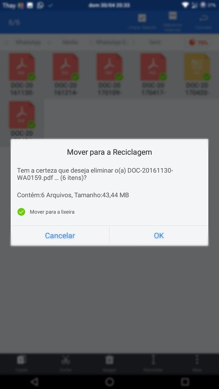 Como apagar documentos enviados no Whatsapp