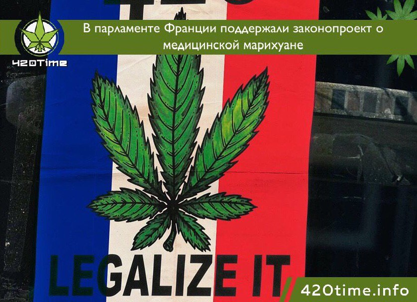 Закон он ношении марихуаны марихуаны h