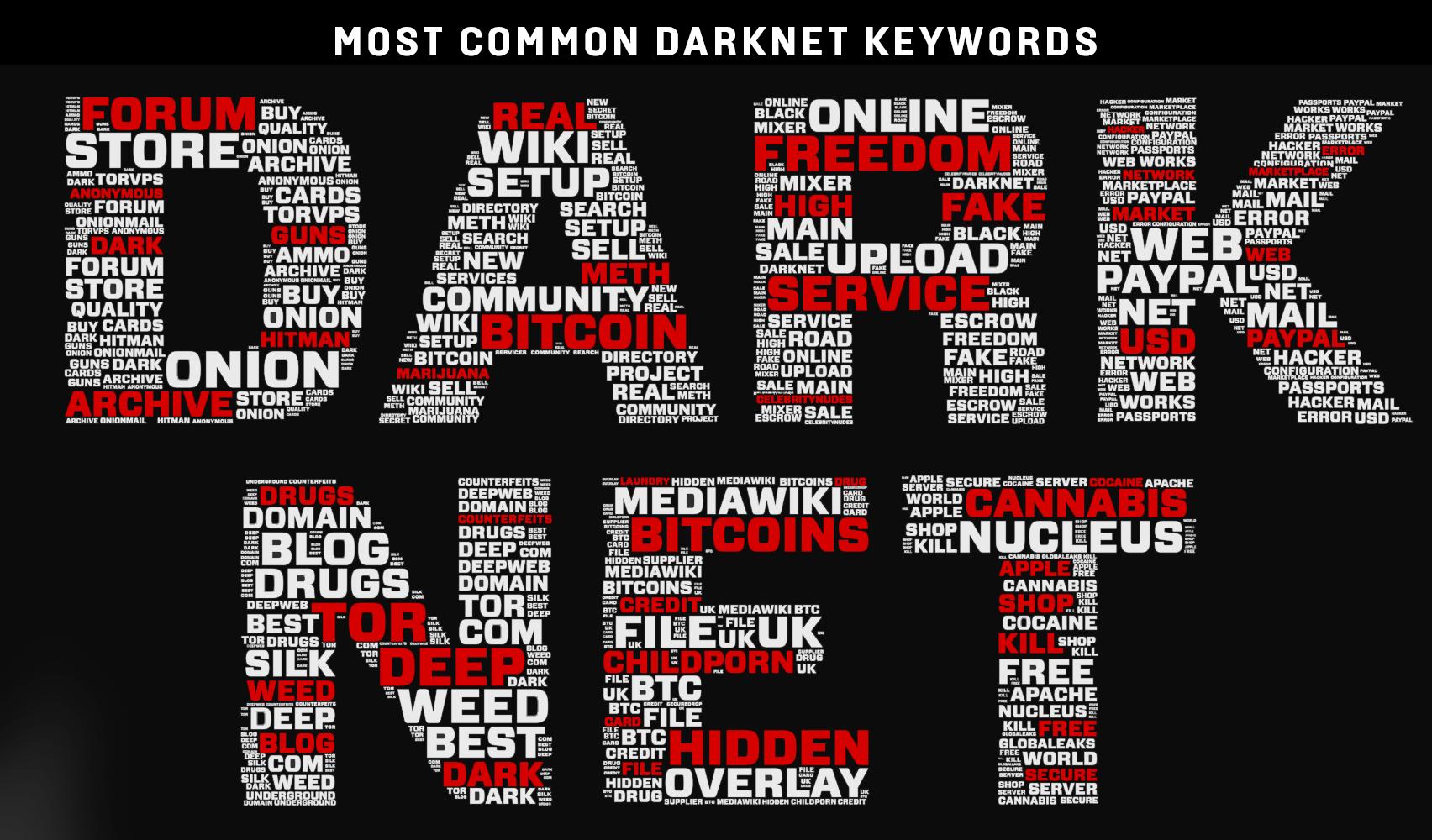 Darknet servers hyrda tor browser 2 скачать бесплатно русская версия hudra