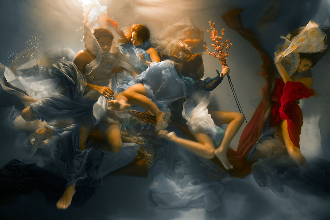 underwater photos look like baroque paintings...