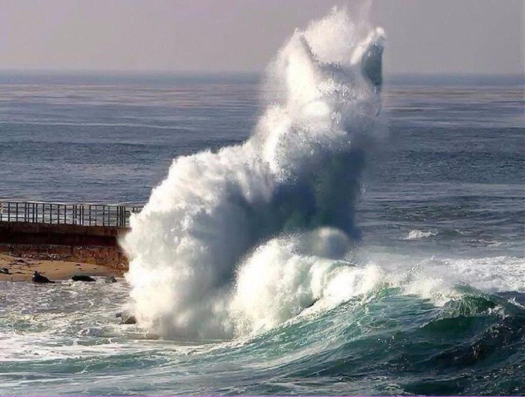 Море картинка прикол, день рождения