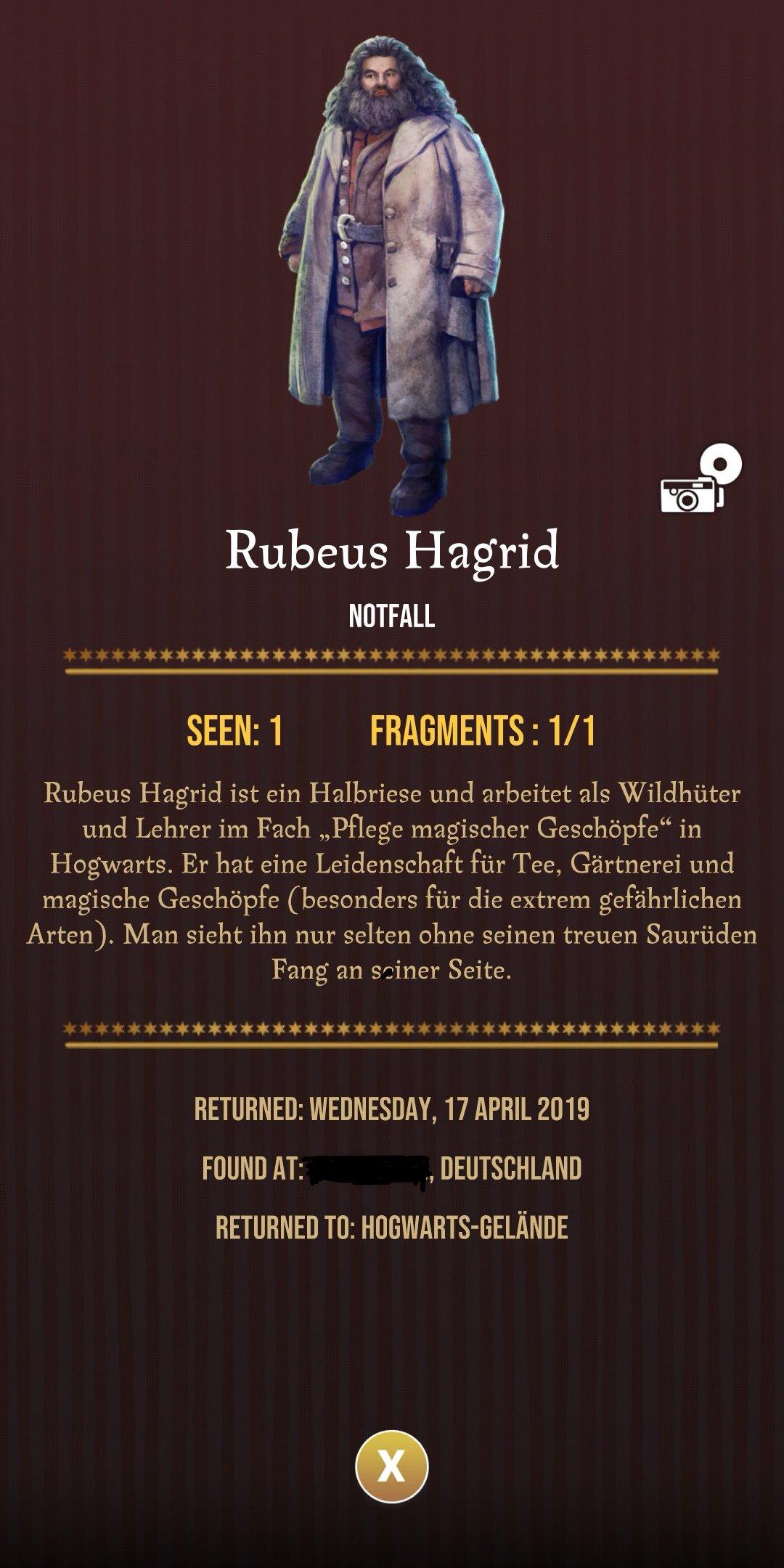 Detailansicht Rubeus Hagrid