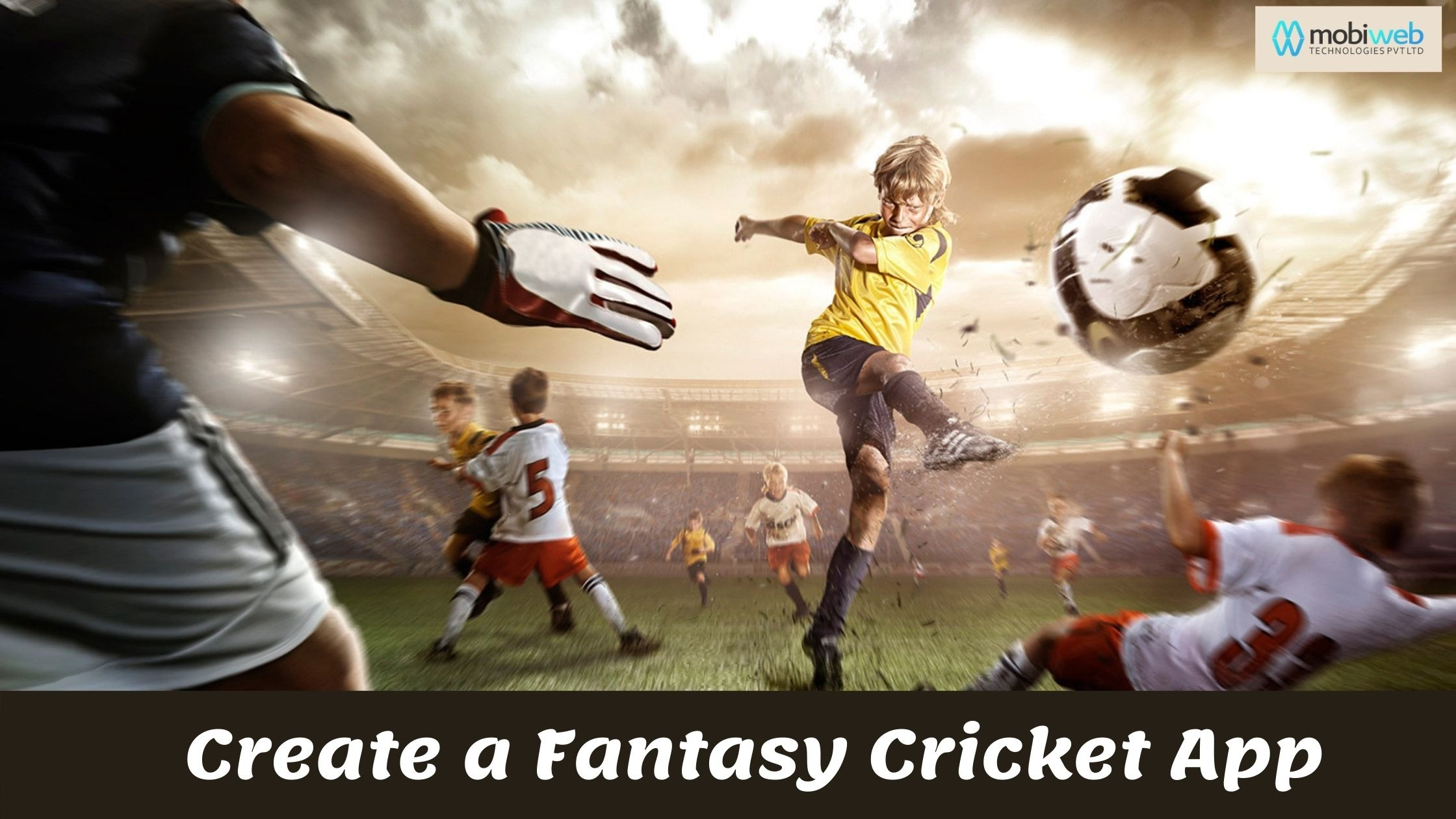 Why 2020 is the Best Time to Create a Fantasy Cricket App?