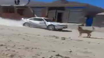 Un rallye accidentado