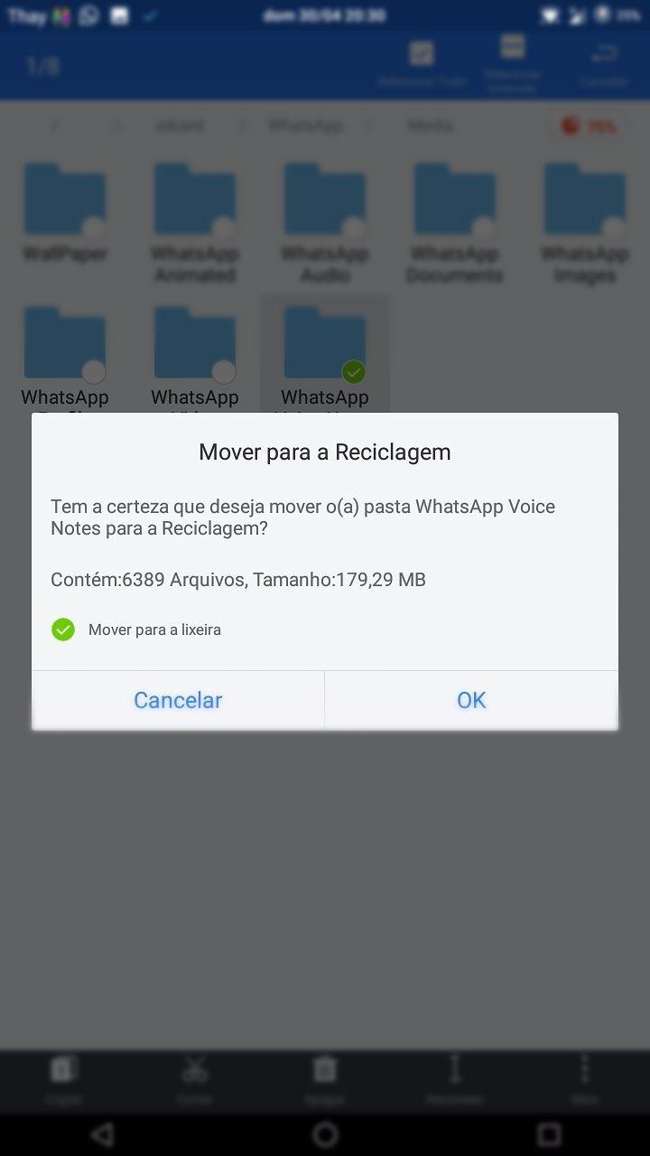 Como apagar mensagens de voz do Whatsapp