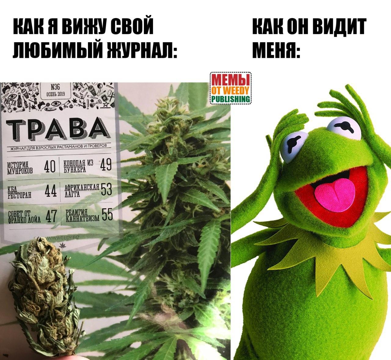 А для растамана деньги марихуана красная плесень он косит эту коноплю слушать
