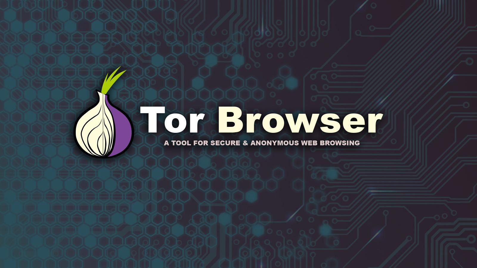 Tor darknet onion hydra onion wiki gydra